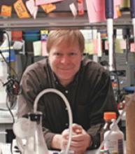 Kim J. Hasenkrug, Ph.D. | Principal Investigators | NIH Intramural ...